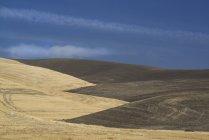 Contornos de la tierra cultivada en el Condado de Palouse - foto de stock