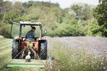 Tracteur coupant un andain dans un champ . — Photo de stock