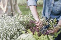 Woman making a flower wreath. — Stock Photo