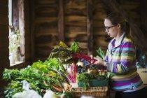 Woman handling organic produce — Stock Photo