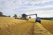 Moissonneuse-batteuse travaillant aux côtés du tracteur — Photo de stock