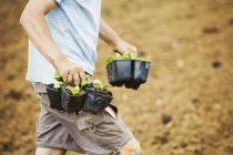 Man field carrying plant pots — Stock Photo