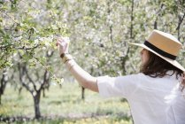 Woman under an apple tree in blossom. — Stock Photo