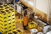 Arbeiter mit Bierflaschen in einer Brauerei. — Stockfoto