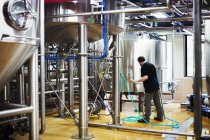 Человек, работающий на пивоварне — стоковое фото