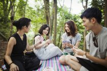 Women and a man playing cards in a forest — Stock Photo