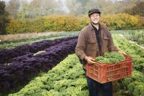 Man carrying fresh picked vegetables — Stock Photo