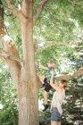 Niños trepando árbol . - foto de stock