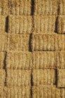 Застрявший хай-байлс — стоковое фото