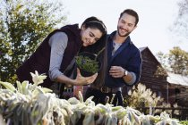Young man and woman choosing plants — Stock Photo