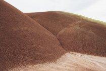 Paisaje del desierto pintado - foto de stock