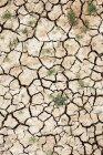 Rissige, ausgetrocknete Bodenoberfläche — Stockfoto