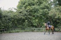 Homme à cheval dans le paddock — Photo de stock