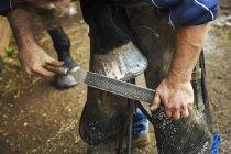 Farrier filing hoof of horse — Stock Photo