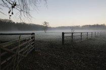 Туман лежит на огороженном поле — стоковое фото