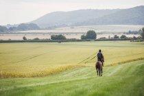 Homem equitação cavalo através do campo — Fotografia de Stock