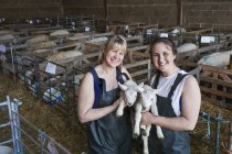 Miling women standing in a stable — Stock Photo
