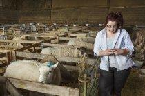 Woman standing next to sheep pen — Stock Photo