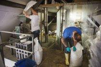 Мужчины, работающие на пивоварне — стоковое фото