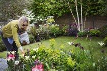 Frau steht in einem Garten — Stockfoto