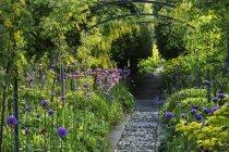 Ver os ao longo do caminho no jardim — Fotografia de Stock