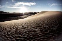 Пустынный пейзаж с песчаных дюн — стоковое фото