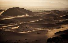 Paisagem de deserto, com dunas de areia — Fotografia de Stock