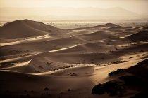 Paisagem de deserto com caravana — Fotografia de Stock