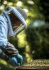 Під час роботи бджоляра — стокове фото