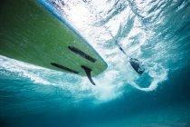 Паддингтон под водой . — стоковое фото
