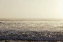 Прибережні сцени океану порушення хвилі в Олімпійського національного парку, в м. Вашингтон, США — стокове фото