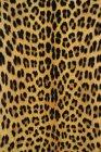 Patrón de piel de leopardo, marco completo . - foto de stock