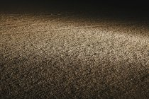 Vista de noche de superficie seca y desierto agrietada en Black Rock Desert en Nevada, Estados Unidos - foto de stock