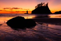 Second Beach at sunset in Olympic National Park, Washington, USA — Stock Photo