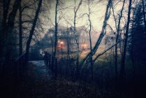 Large house at dusk with glowing light in gloomy woodland with footbridge. — Stock Photo