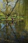 Сільських сцени березі озера з жінкою і собака мала під Плакуча верба дерево. — стокове фото
