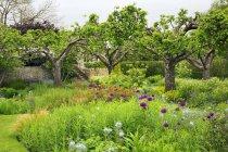 Rurale scena del giardino con aiuole e alberi in Oxfordshire, Inghilterra. — Foto stock