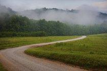 Chemin de terre rural sinueux à travers les bois recouverts de brouillard dans le Tennessee, États-Unis . — Photo de stock