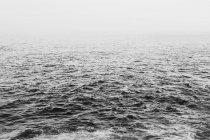 Густой туман, поднимая от порывистый воды Тихого океана — стоковое фото
