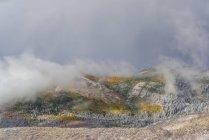 Paesaggio della Foresta Nazionale di Uinta in fogliame autunnale con nuvole di nebbia . — Foto stock