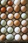 Bandeja de ovos orgânicos frescos na variedade de cores. — Fotografia de Stock