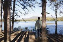 Vista posteriore dell'uomo in piedi nell'ombra dei pini e guardando il lago. — Foto stock