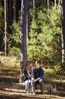Пара сидящих на бревне в сосновом лесу . — стоковое фото