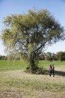 Jovem casal dançando e olhando um ao outro por árvore no campo rural — Fotografia de Stock