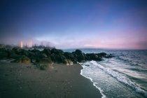 Nebbia di ribaltamento di Stanley Park, Columbia britannica, Canada — Foto stock