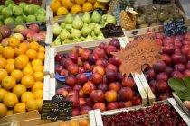 Запакований фруктів зрив ринок зі свіжими фруктами на дисплеї. — стокове фото