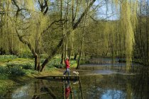 Woman and dog standing on jetty of lake under weeping willow tree. — Stock Photo