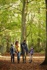 Família em casacos quentes andando de mãos dadas em madeiras de faia no outono . — Fotografia de Stock