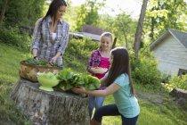 Junge Frau mit vorpubertären Schwestern, die frisches Gemüse und Obst auf Baumstumpf in Ackerland legen. — Stockfoto