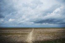 Estrada rural ao longo do caminho Ridgeway através do condado de Berkshire, Inglaterra . — Fotografia de Stock